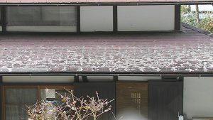 奈良県吉野郡 雨漏り調査6