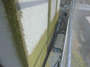 三重県名張市 外壁にスタッコ柄を吹きつけ塗装2